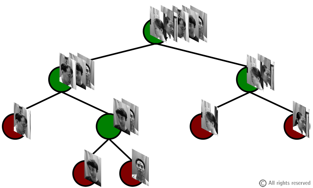 Figure 1: A multi-objective random tree. In this example, the tree tends to split training images on Gender at the higher levels and on pose angles at the lower ones.