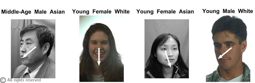 Figure 3: Example of estimation. The Age, Gender, Ethnicity and head pose (i.e. Pan angles) are estimated by MORF for each images.