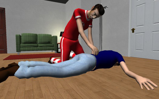 RIMSI medical simulation